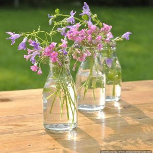 retro glass milk bottles | Flower Vessels
