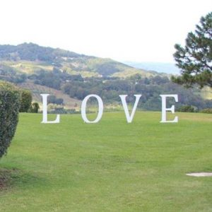 L.O.V.E  letters (1m tall) | Signage & Easels